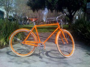 PUBLIC D8 orange