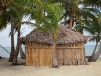 Panamanian Hut